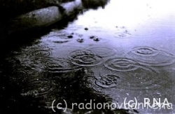chuva-.jpg